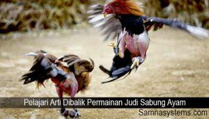 Pelajari Arti Dibalik Permainan Judi Sabung Ayam