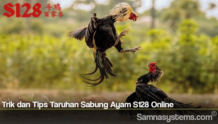 Trik dan Tips Taruhan Sabung Ayam S128 Online